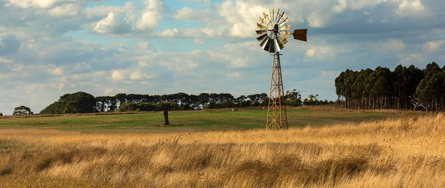 Australian farms are a hot commodity among overseas buyers