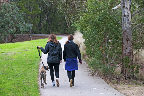 Walking the dog, Merri Creek Trail