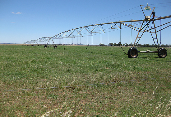 The Rendell Dairies farm is spread over more than 1200ha.