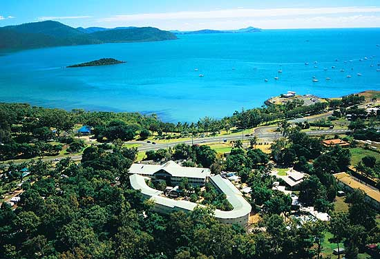 Club Crocodile Airlie Beach is up for sale.