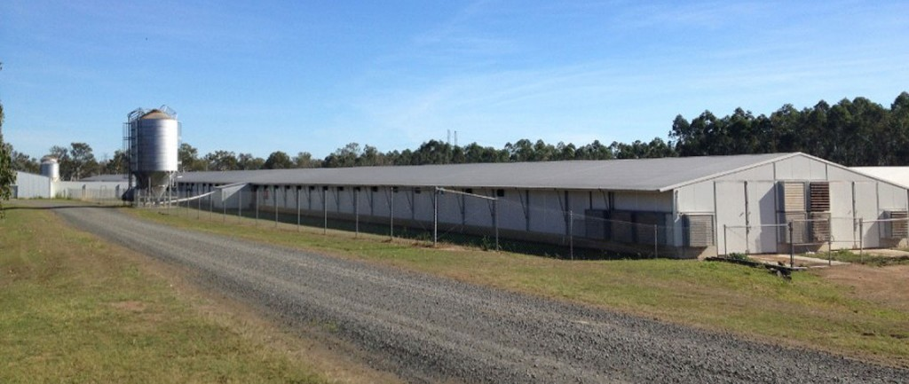 A chook farm leased to Steggles near Ipswich has sold to Sentinel Property Group for more than $22 million.