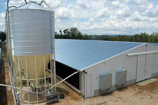 The chicken farm purchased by Sentinel has capacity for 187,000 birds.