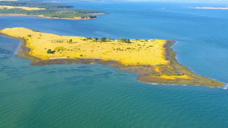 Island up for grabs near Melbourne