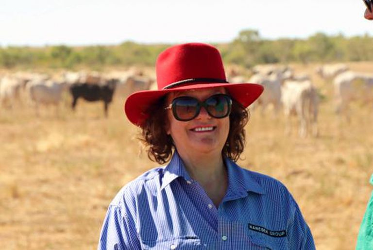 Gina Rinehart buys NT cattle station from Indonesian owners