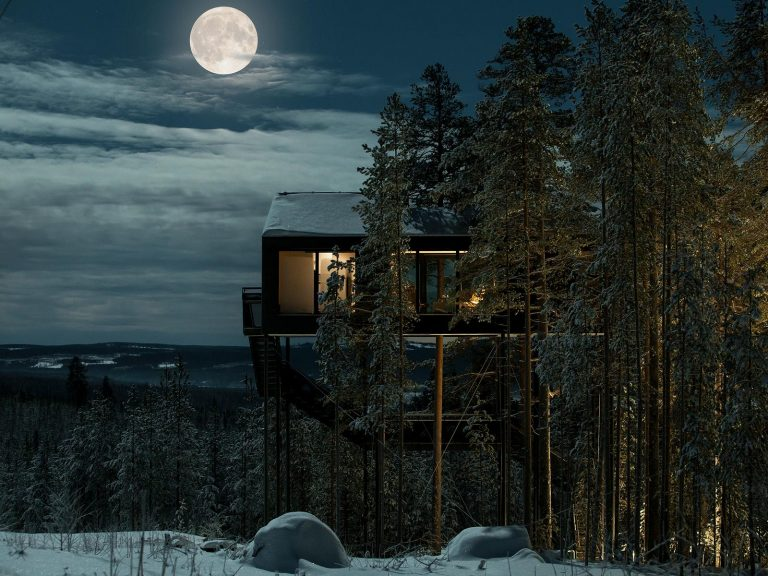 This Swedish treetop hotel will blow your mind