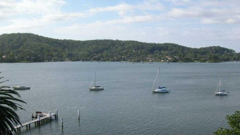 Marina, ferry wharf or shops mooted for East Gosford waterfront site