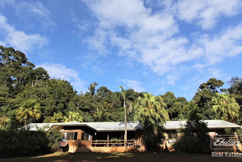 The Canopy Rainforest Tree Houses and Wildlife Retreat