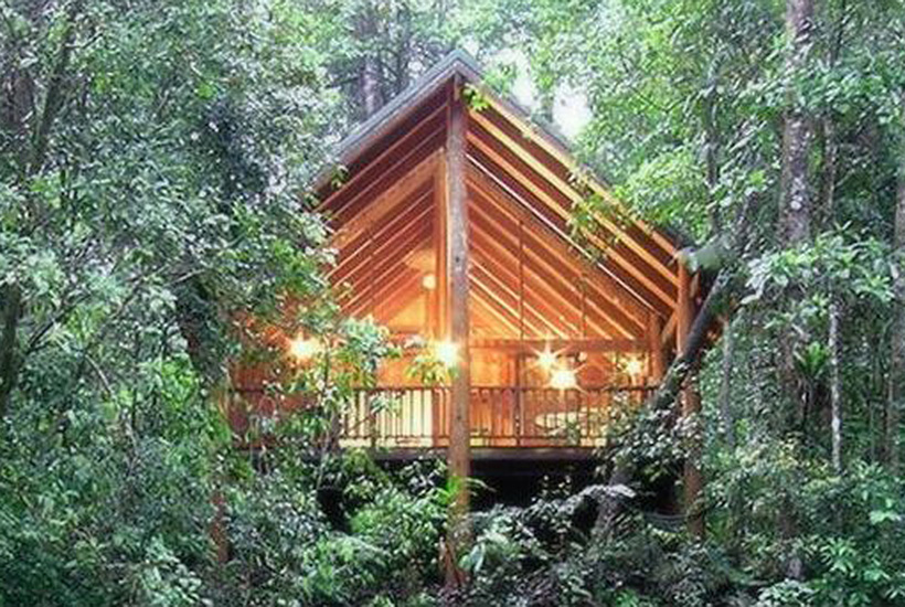 The Canopy Rainforest Tree Houses and Wildlife Retreat in the Cairns highlands.