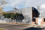 Geelong butcher building's stunning art makeover