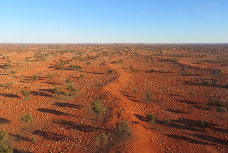 Billionaire sheik sells off NT cattle station for $7m-plus