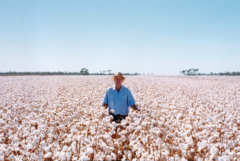 Once-in-a-century chance to buy NSW cotton farm