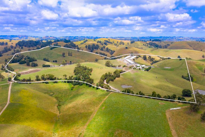 This farm could be used for a variety of different agribusinesses including growing medicinal cannabis. Picture: realcommercial.com.au/for-sale