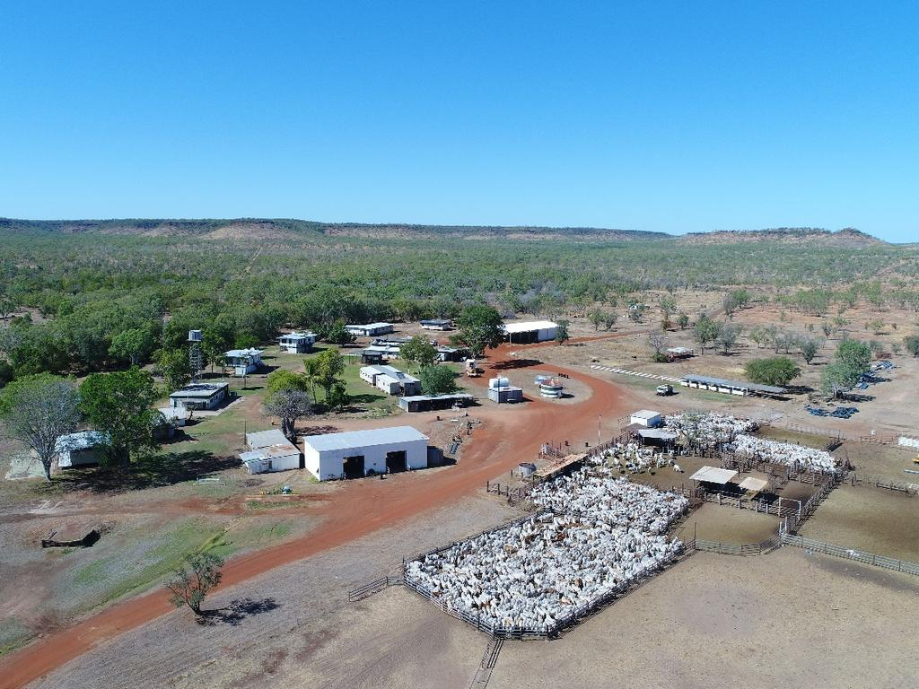Willeroo Station in the Northern Territory. Picture: Hancock Agriculture