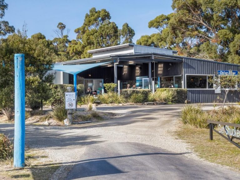 Bruny Island oyster business hits the market